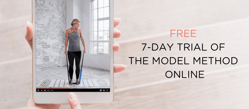 the model method online